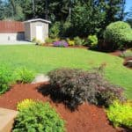 AFTER - The yard is colorful and healthy